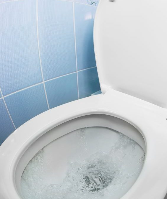 5 Items To Never Flush Down Your Toilet